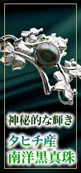 神秘的な輝き!タヒチ黒真珠